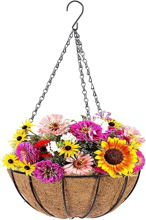 Metal Hanging Planter Basket with Coco Coir Liner, 12 Inch Round Wire Plant Hanging Basket with Chain, Porch Decor Flower Pots Hanger Garden Decor Indoor Outdoor Watering, Garden Hanging Flowers Wall