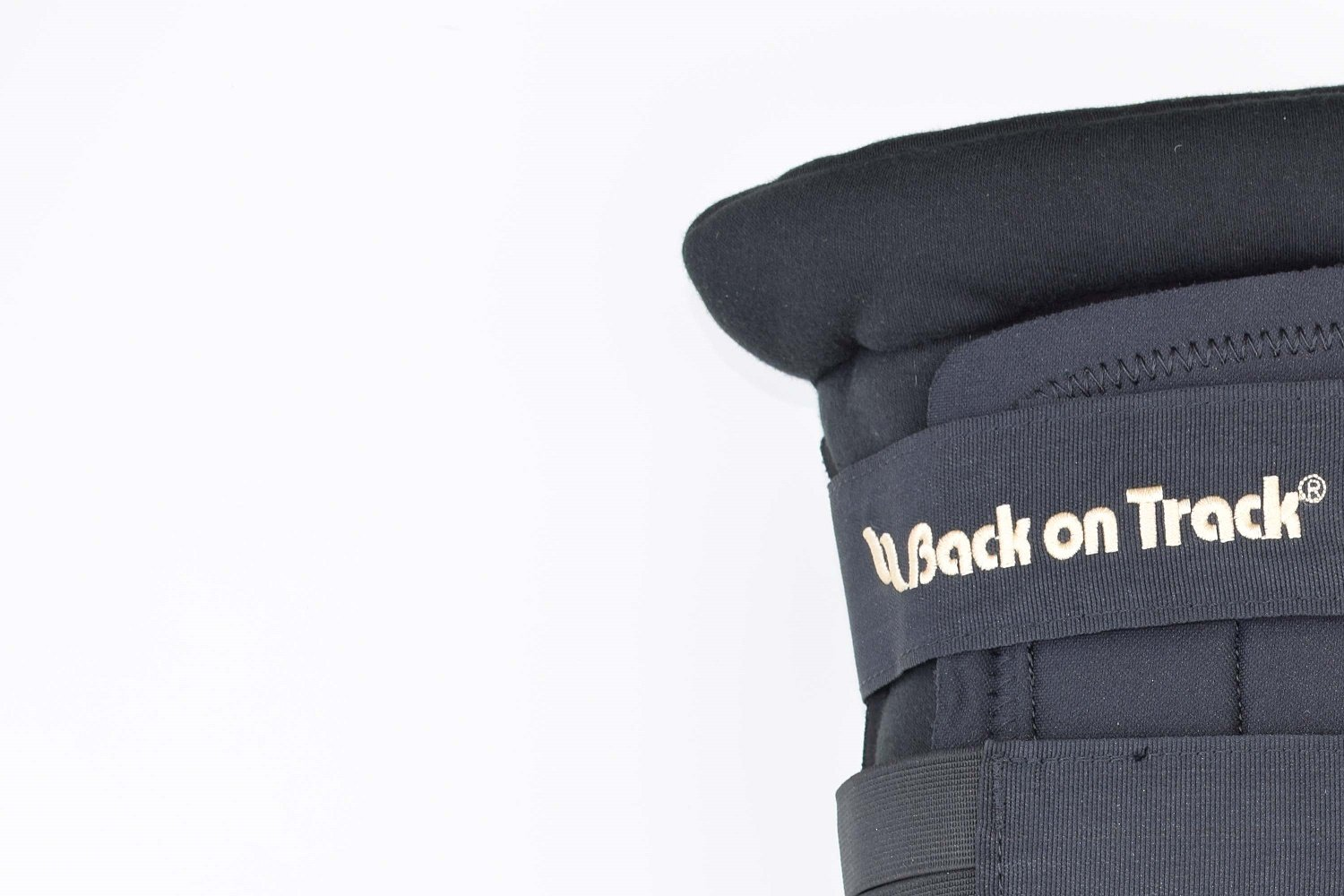 Back on Track Padded Hock Boots (large) by BACK ON TRACK