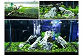 Hewnda 2 pounds to Complete Freshwater Planted
