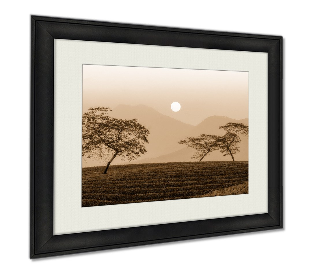 Ashley Framed Prints Dawn Tea Hills Mountainous Thai Nguyen Vietnam, Wall Art Home Decoration, Sepia, 34x40 (frame size), AG6092239 by Ashley Framed Prints