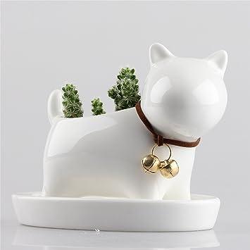 Little Dog weiß Keramik Blumentopf Sukkulente Blumentopf Übertopf ...
