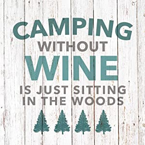 Paperproducts Design 1252864 Beverage Napkin, Paula Scaletta, Camping Without Wine