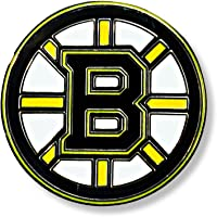 aminco NHL Logo Pin
