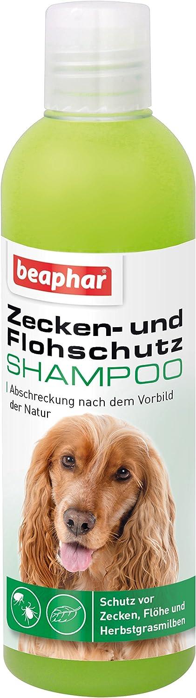 Champú antigarrapatas y antipulgas para Perros y Gatos a Partir de 12 semanas, champú antigarrapatas de 250 ml