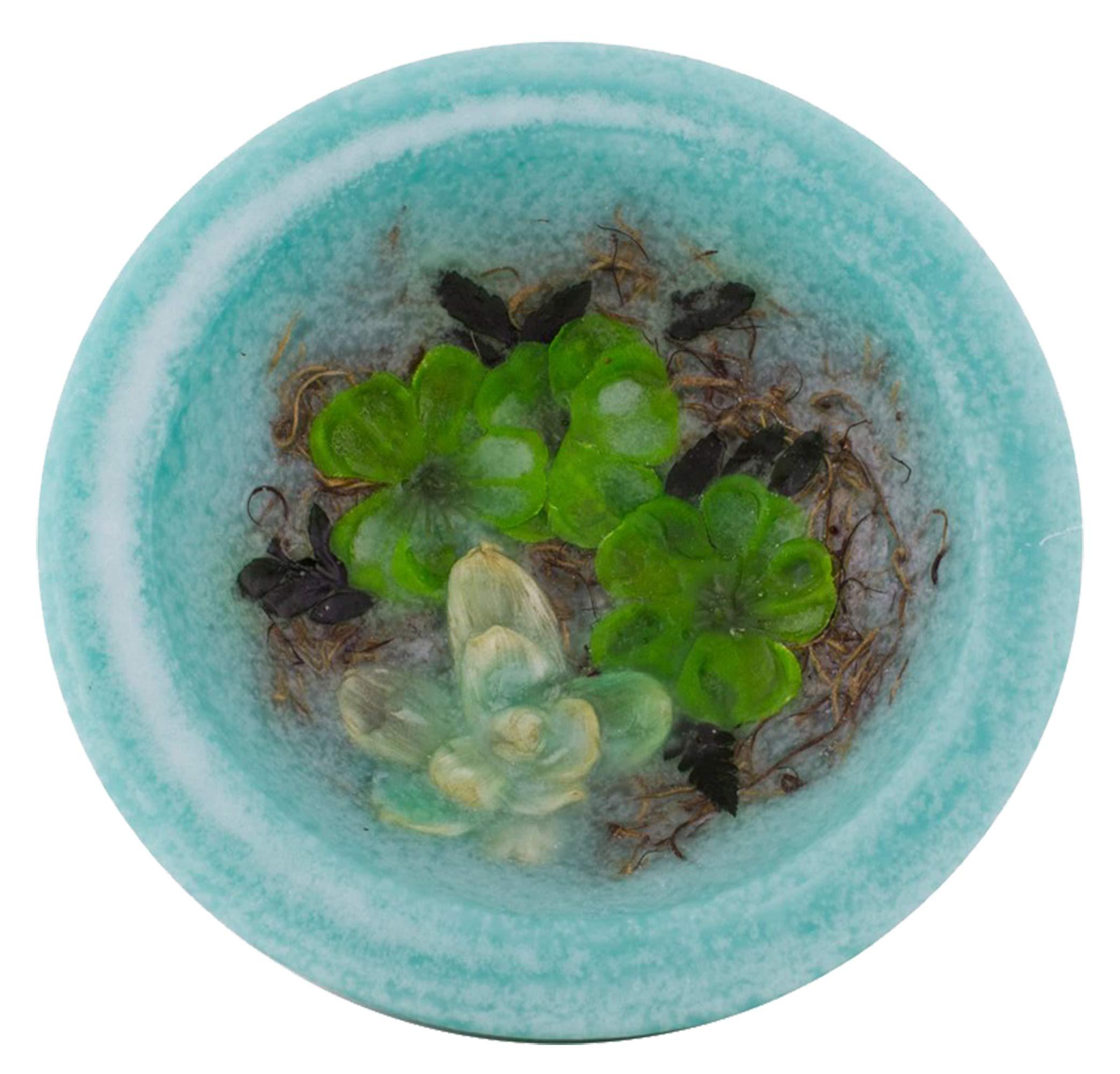 Habersham Gardenia Water Lily Personal Space Wax Pottery Vessel