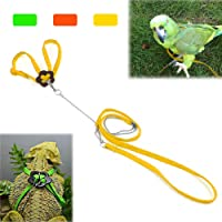 Mokook Bird Harness and Leash for Parrot African Grey Cockatoo Macaw Ringneck Parakeet Cockatiel, Adjustable and Bite Resistant Design