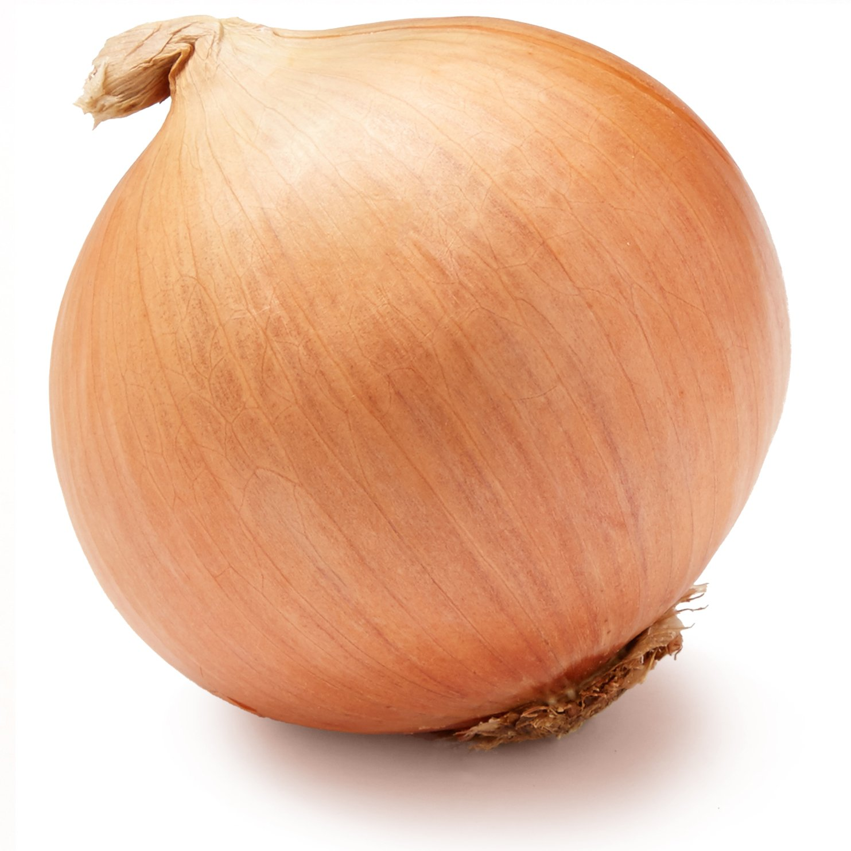 Yellow Onion, One Large