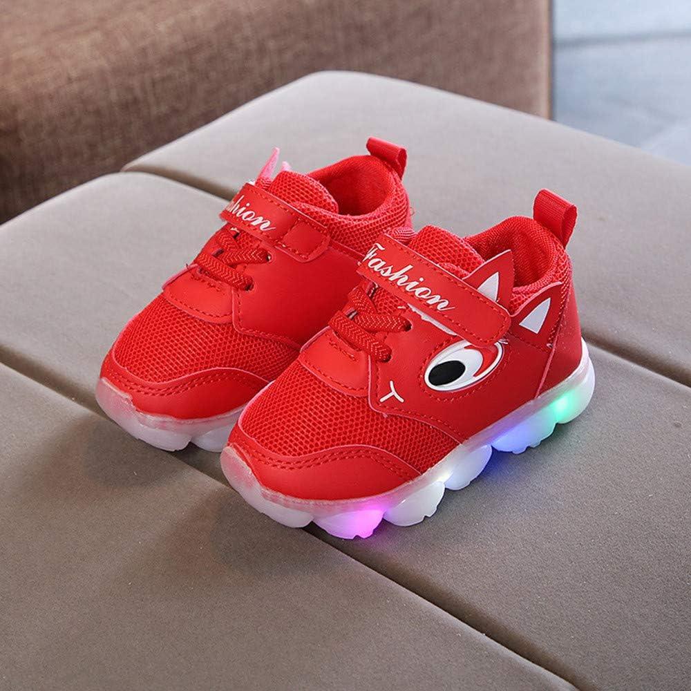 Zapatos LED Niños Niñas Zapatillas Niño Zapatillas para Bebés Zapatos de bebé Luces Luminosos Zapatillas de Deporte Antideslizante Zapatillas con Luces para niñas niños Regalos para Niños ZARLLE: Amazon.es: Ropa y accesorios