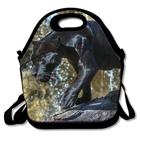 Amazon.com: Bolsas de almuerzo con cremallera aislante para ...
