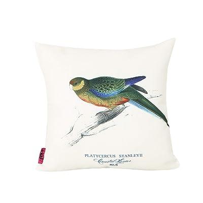Christopher Knight Home 307141 Alma Outdoor Cushion, Multi Color : Garden & Outdoor