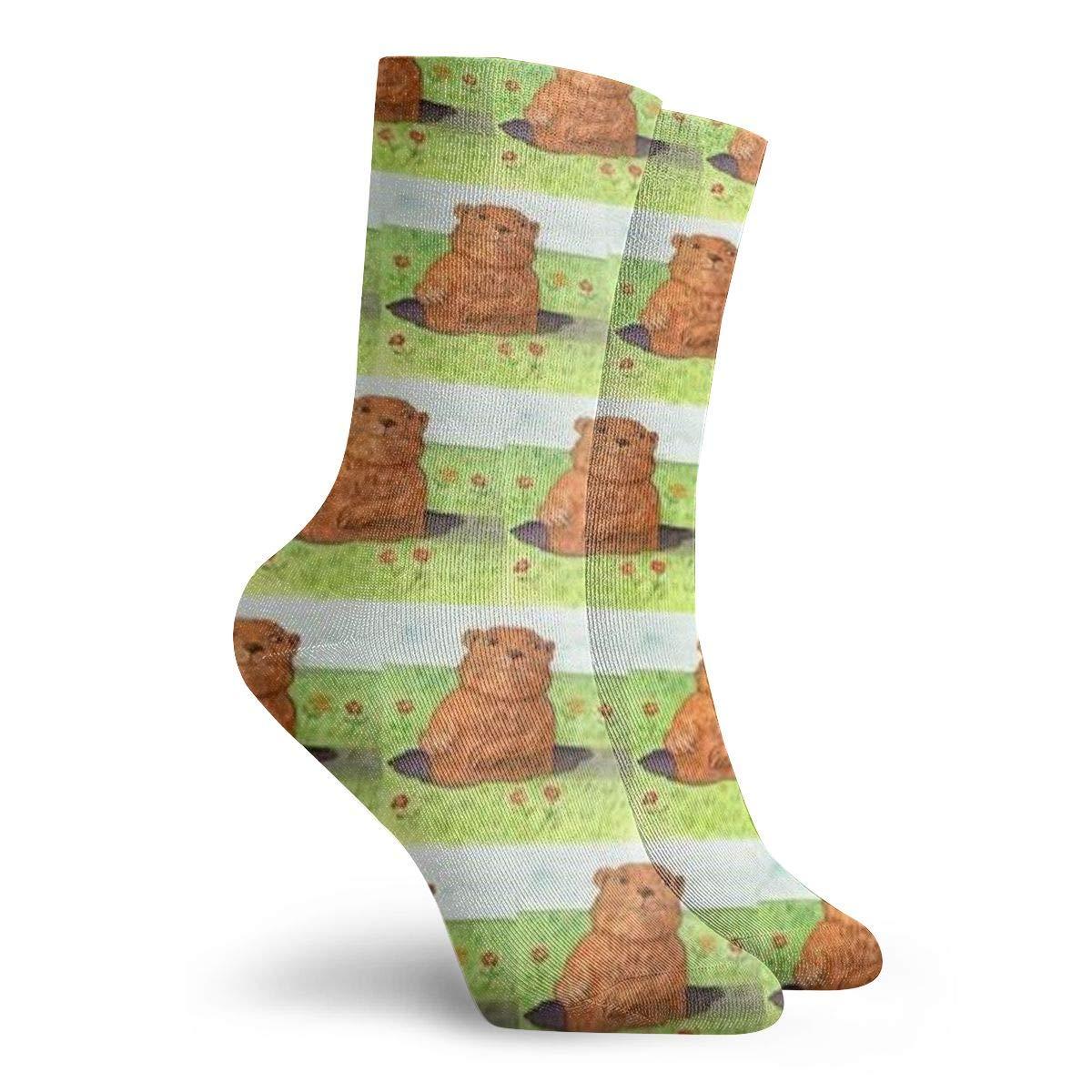 Jokerbilibili Whimsical Groundhog Day Out Unisex Print Athletic Quarter//Ankle Running Hiking Socks-Weekend Lounge Short Crew Socks