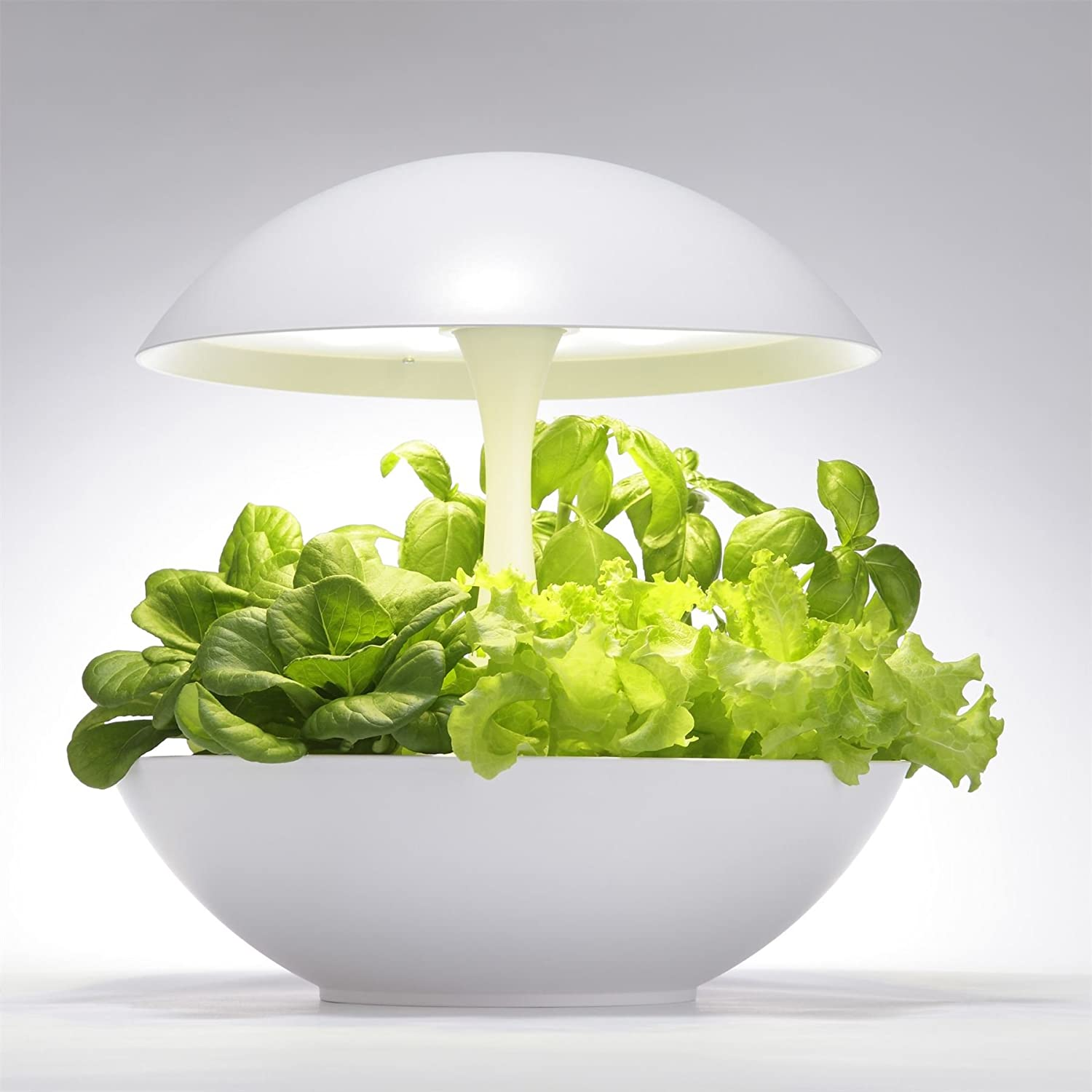 Akarina Hydroponic Indoor Plant and Flower Growing System with LED Grow Light - No Gardening Expertise Required