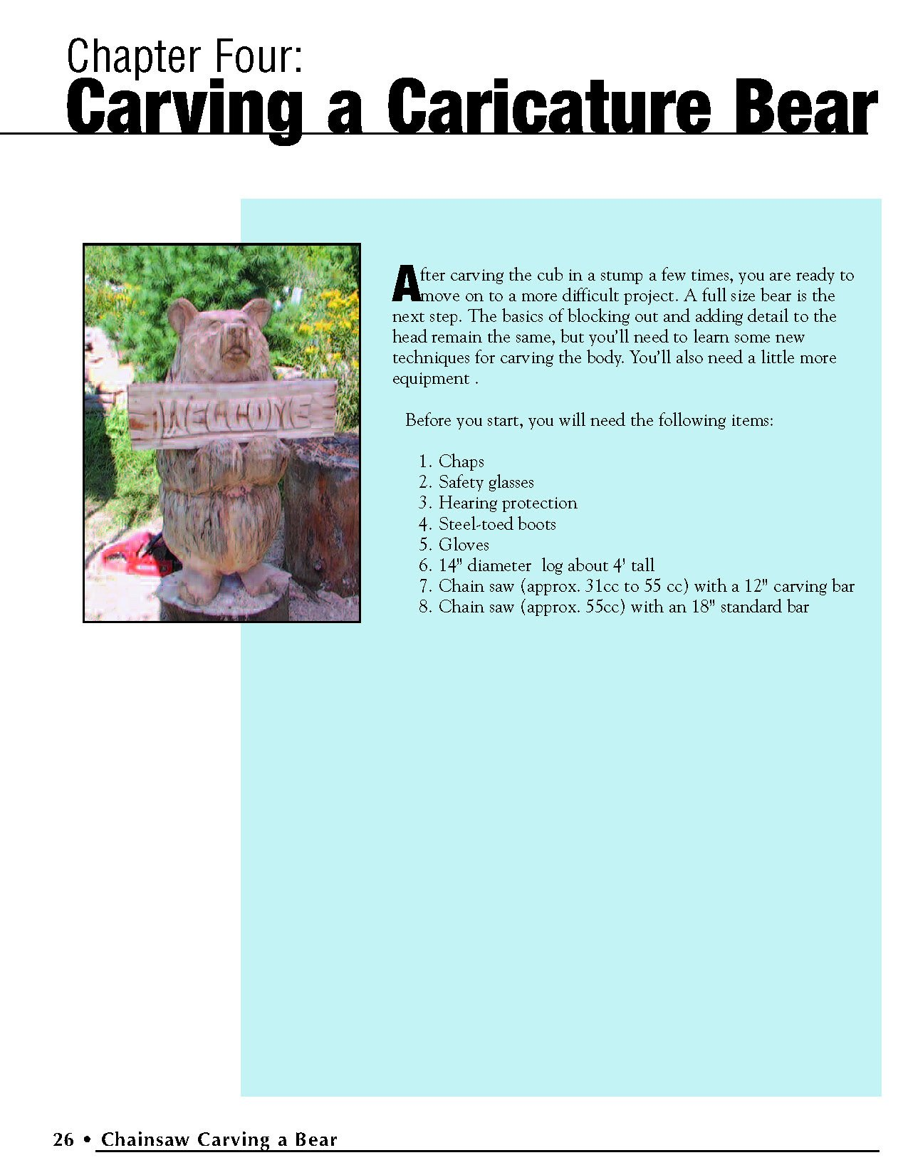 Chainsaw Carving a Bear: A Complete Step-By-Step Guide by Fox Chapel Publishing (Image #4)