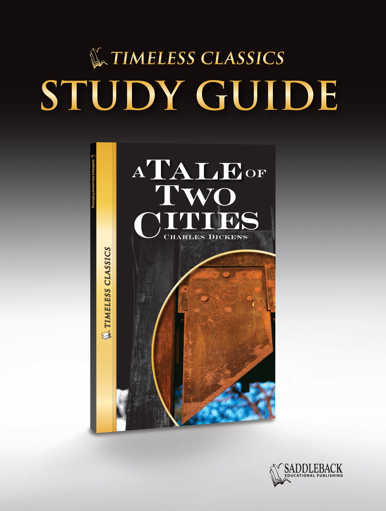 A Tale of Two Cities Study Guide (Timeless) (Timeless Classics) PDF