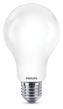 BOMBILLA INCALED LED CLASSIC LED 100W A67 CW FR ND 1CT1 AHORRO DE ENERGÍA LUZ NATURAL