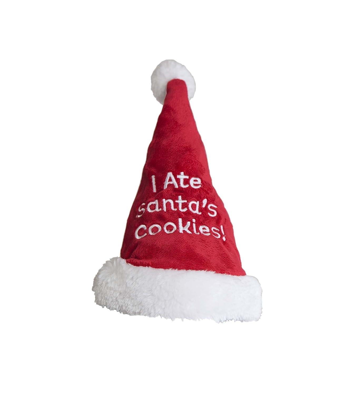 Outward Hound 11006 Christmas Holiday I Ate Santa's Cookies  Santa Hat, Medium