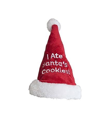 09d3dbdb09f8f Amazon.com  Outward Hound 11007 Christmas Holiday