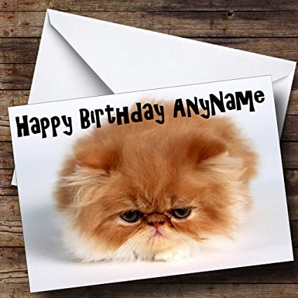 Amazon persian kitten ball of fur personalized birthday persian kitten ball of fur personalized birthday greetings card m4hsunfo