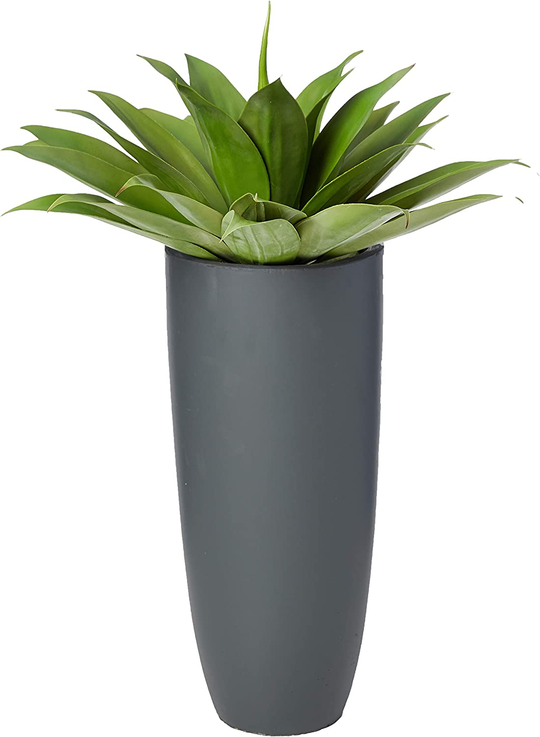 "Nearly Natural 38"" H Agave Artificial Plant in Planter, Green"