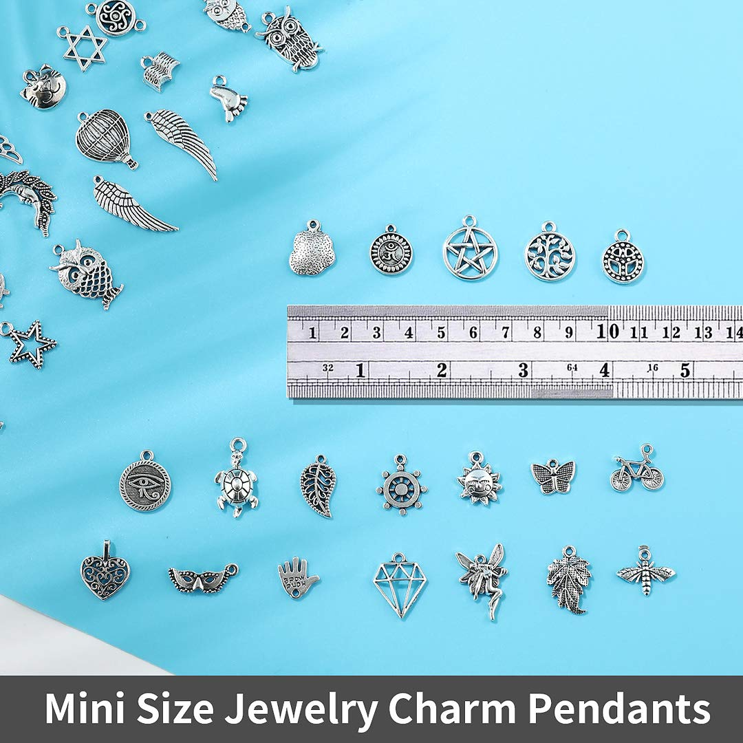 300 PCS Wholesale Bulk Lots Jewelry Making Charms Mixed Smooth Tibetan Silver Alloy Charms Pendants DIY for Necklace Bracelet Jewelry Making and Crafting