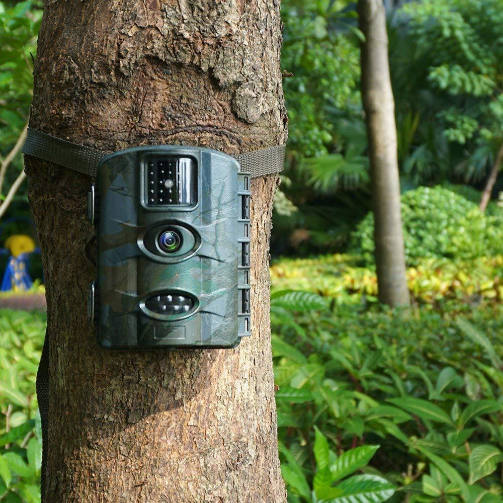C/ámara de Caza Vigilancia 16MP y 1080P Trail C/ámara Impermeable IP65 con Infrarrojos PIR Sensor de Movimiento con Lapso de Tiempo 65ft Visi/ón Nocturna hasta de Fauna con Protecci/ón de Salpicaduras