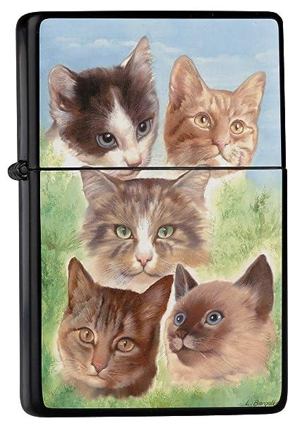 Mechero Lighter Impreso raza gato gatos birmanos