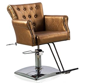 TrumpStar Gold Color Salon Chair for Hair Styling Cutting Dyeing with Dryer Hold and Hydraulic Pump