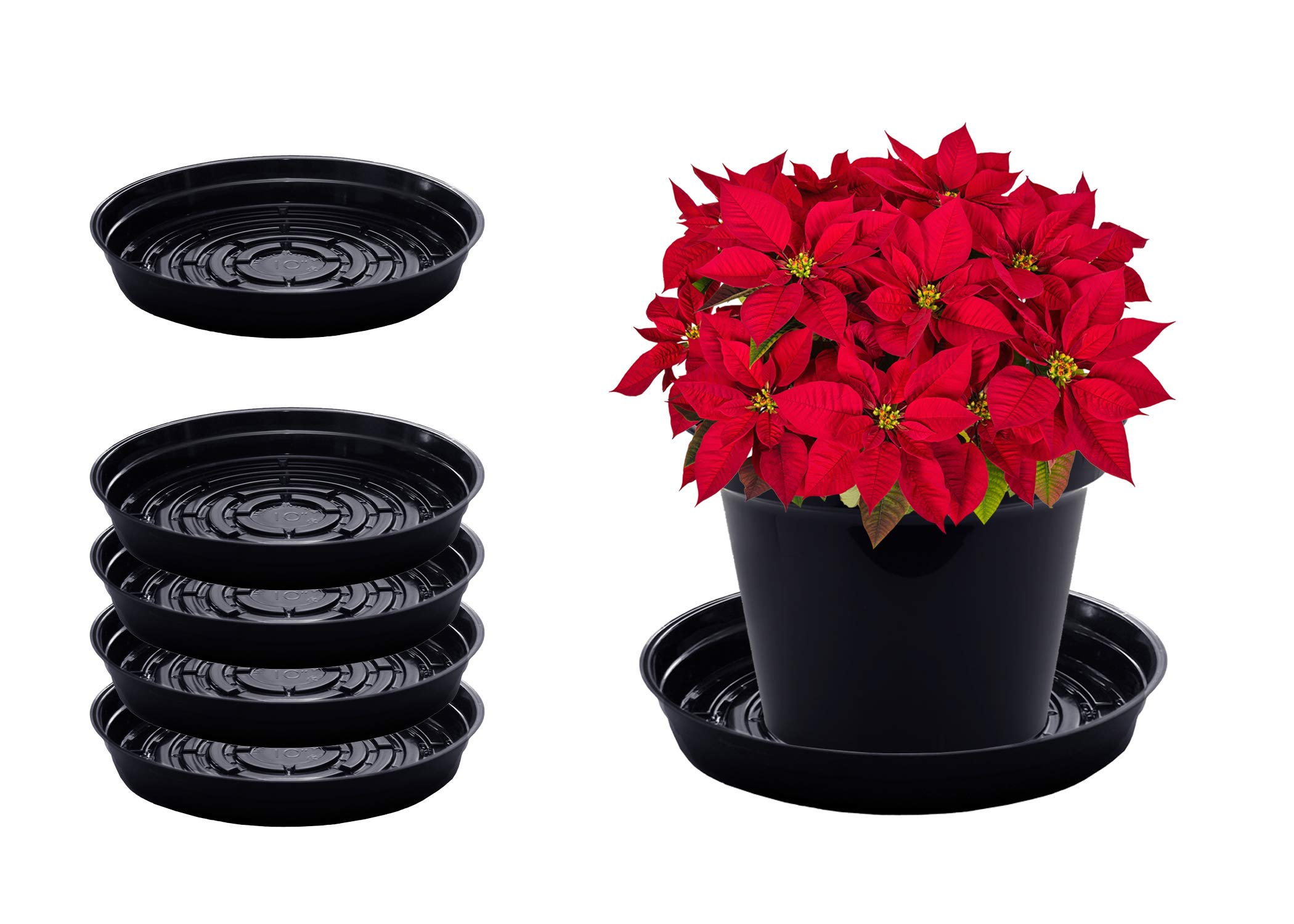 Curtis Wagner Plastics Plant Tray Drip Pan Saucers (5-Pack) - Black, Round (Diameter = 21'' top, 19.25'' Bottom, 3.25'' Depth) Thin Plastic for Indoor or Garden - Clear, Black & Terracotta Floor Savers by Curtis Wagner Plastics Corp.