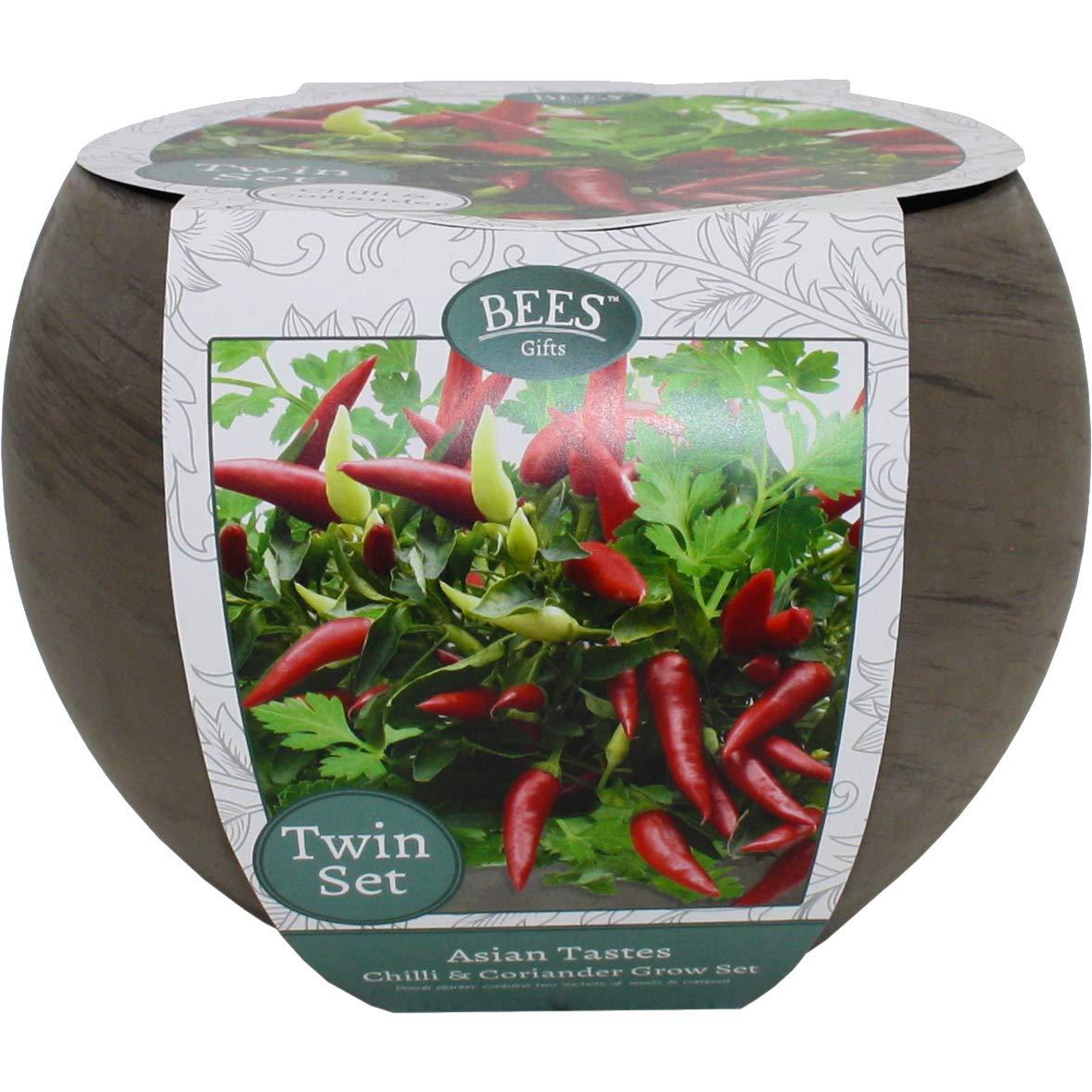 Asian Tastes Chilli and Coriander Grow Set