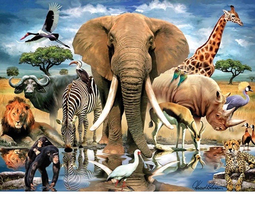 数量限定セール  Giftcraft B076597F2Z 3dパズル – African oasis – Giftcraft African 500 Pieces B076597F2Z, ブランドヒルズ:e888bc1a --- clubavenue.eu