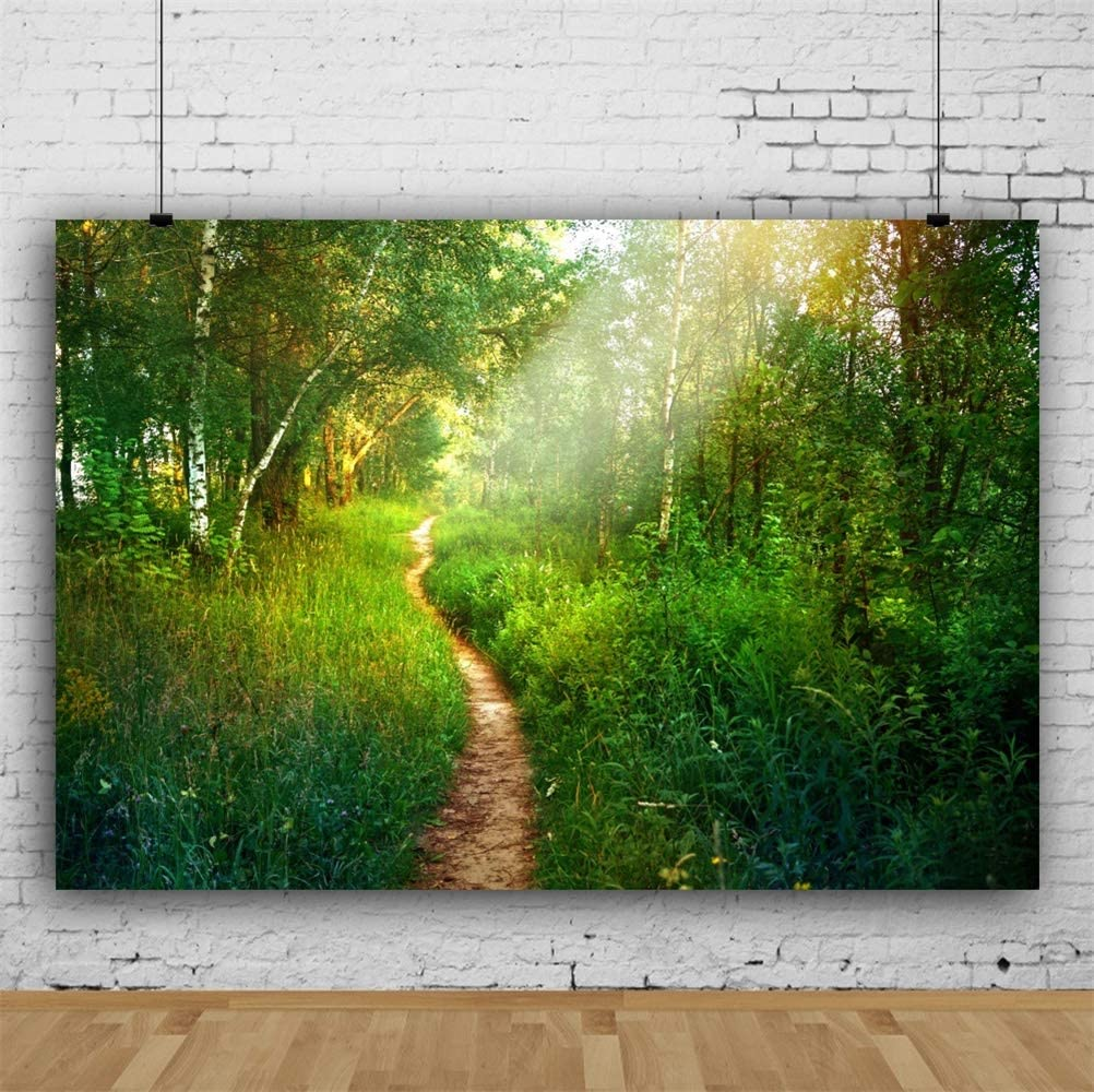 Laeacco 7x5ft Summer Forest Landscape Vinyl Photography Background Wedding Photo Backdrop Lush Trees Green Grass Path Natural Scenery Travel Theme Personal Portraits Shoot Mountain Scenic