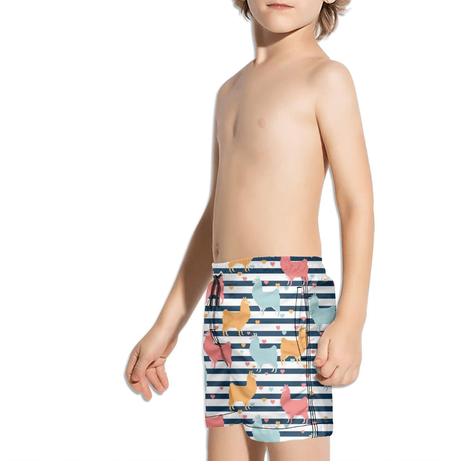 FullBo Colorful Alpaca Llama in blackk Strips Little Boys Short Swim Trunks Quick Dry Beach Shorts