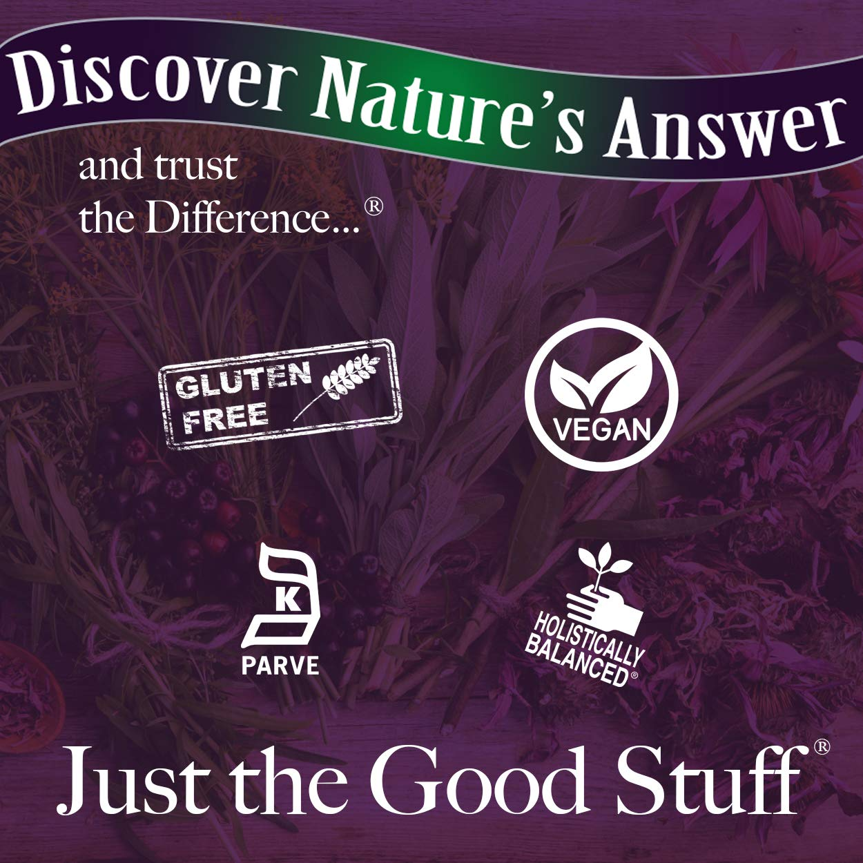 Amazon.com: Natures Answer 1000 mg Dong Quai Root – 90 ...