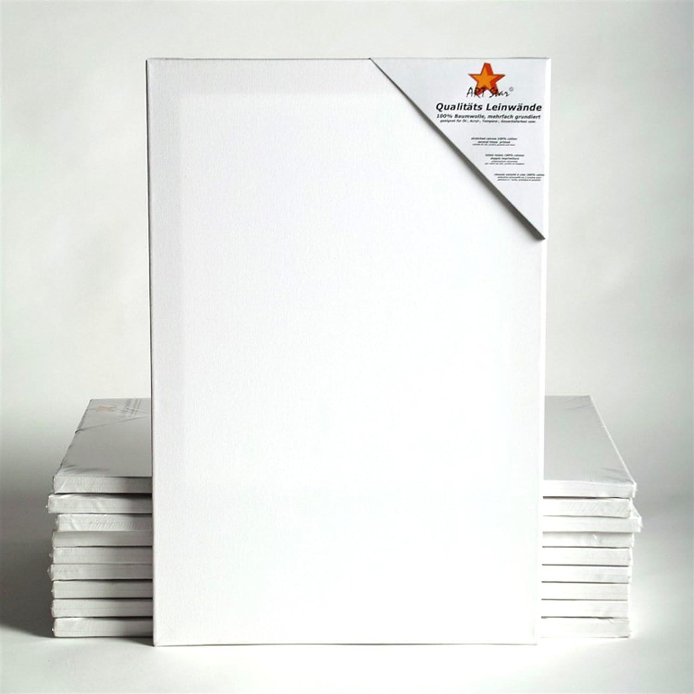 10 TOILES SUR CHASSIS ART-STAR 30x60 cm | prêtes à peindre, 100% coton, idéal p. artistes débutants xtradefactory GmbH
