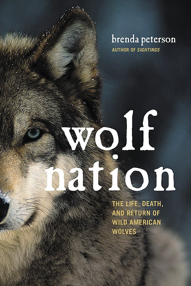 Download Wolf Nation: The Life, Death, and Return of Wild American Wolves (A Merloyd Lawrence Book) ebook