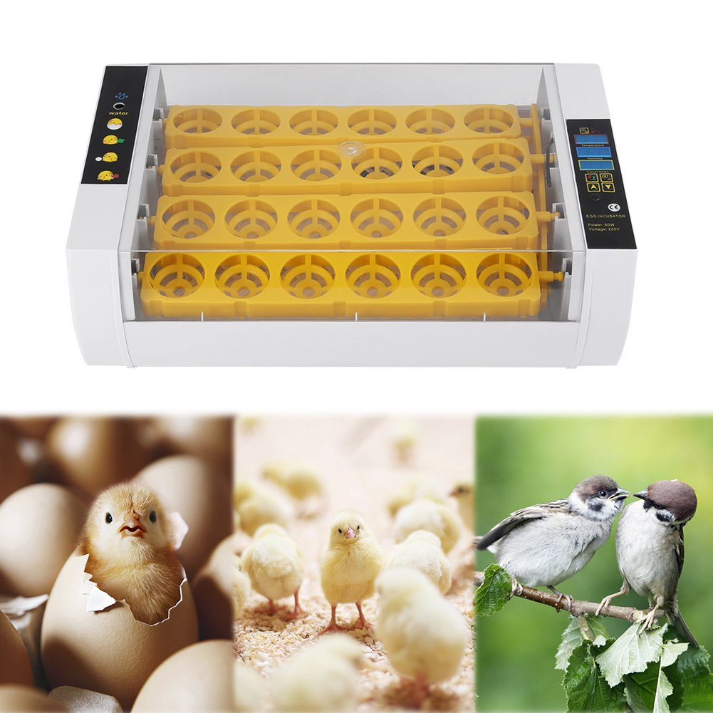 Estink Egg Incubator Hatcher,24 Eggs Fully Clear Digital Automatic Turning Temperature Humidity Incubator Hatcher Control With display for Chicken Chick Duck by Estink