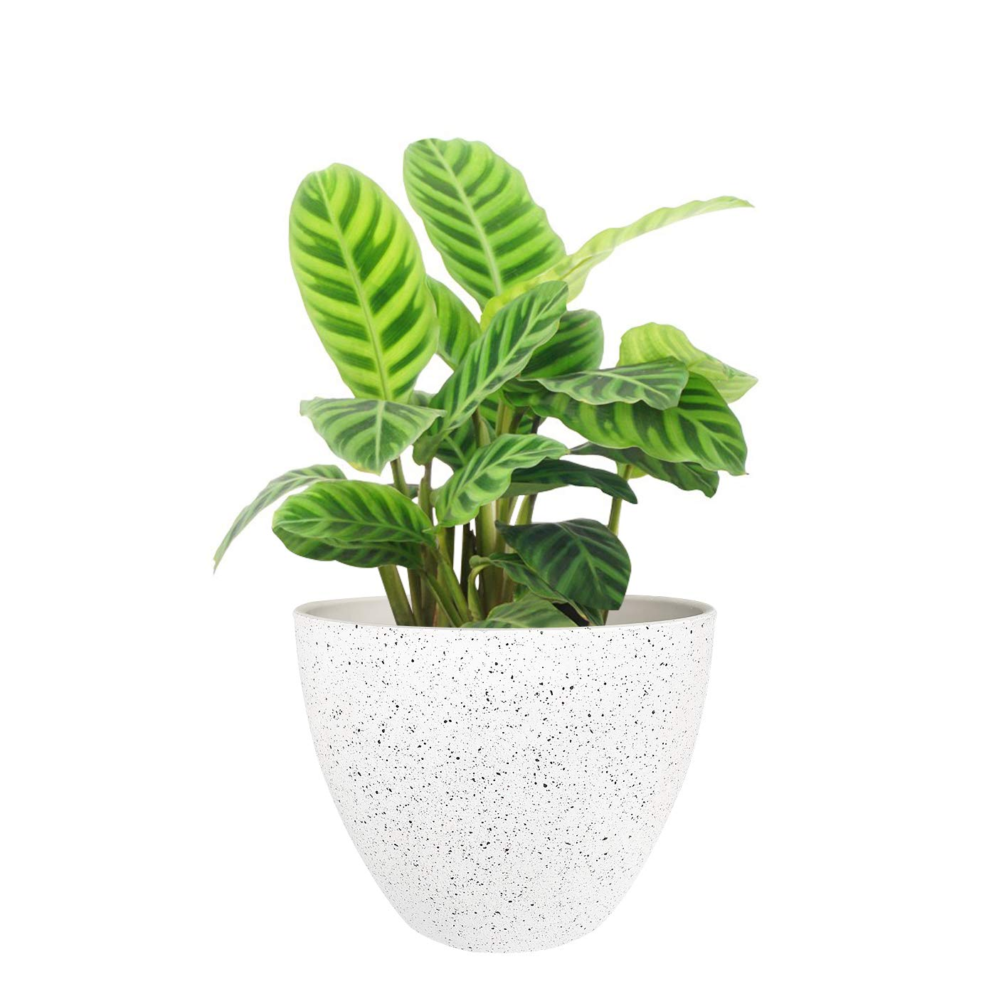 B07R4LMNRC Flower Pots Outdoor Indoor Garden Planters, Resin Plant Containers with Drain Hole, Speckled White (8.6 inches, 1 Pack) 717DHBLs22L