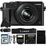 Panasonic DMC PANLX100-16GB4PC 16.8 MP Digital Camera (Black)