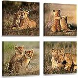 Lion wall Living room Decoration Animal Design Poster art Wall paintings Animal wall art Lion of judah wall art Animal…