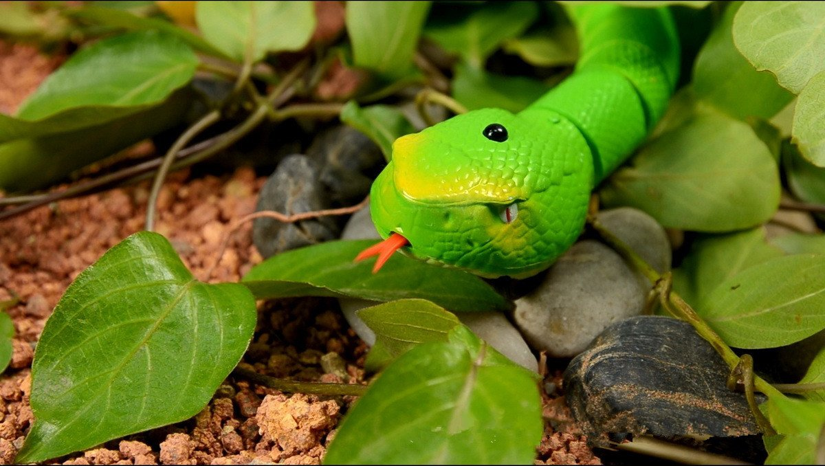 Topseller 16'' Realistic Rechargeable Remote Control RC Snake Toy for Baby Kids Play (Green)
