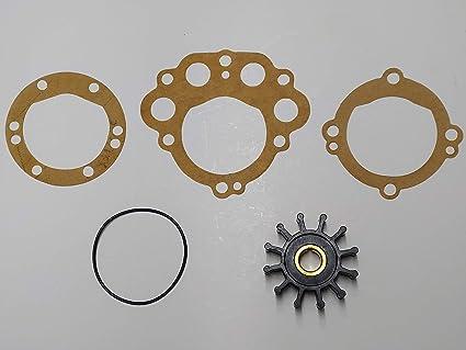 2 Pack Impeller Replaces Sherwood 10077K  Onan 132-0375 Westerbeke 11764 33100