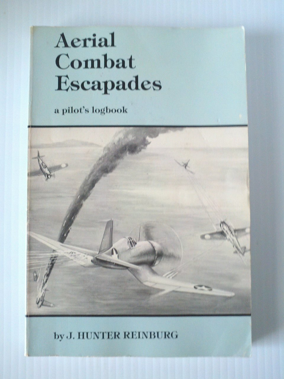 Aerial Combat Escapades: A Pilot's Logbook: The True Combat Aerial Adventures of an American Fighter Pilot