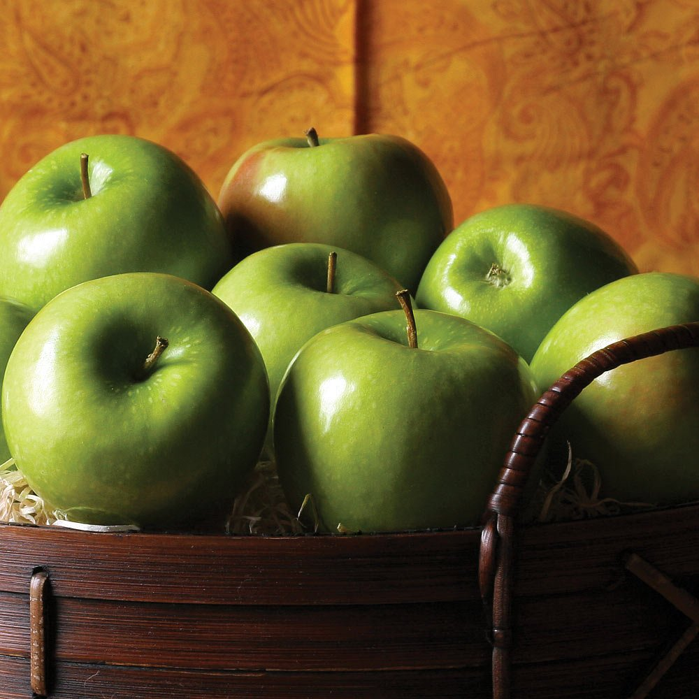 The Fruit Company Granny Smith Apples - 7 lbs - 12 Premium Fresh Granny Smith Apples From The Pacific Northwest Packaged in a Reusable Watercolor Box Designed By Local Oregon Artist