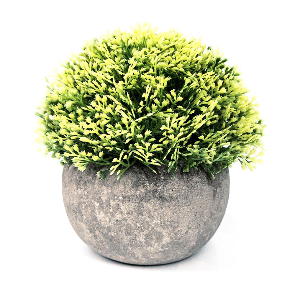 Small Fake Plant for Bathroom/Home Decor, The Bloom Times Artificial Faux Greenery for House Decorations (Potted Plants)(1 Year Warranty) Mintime