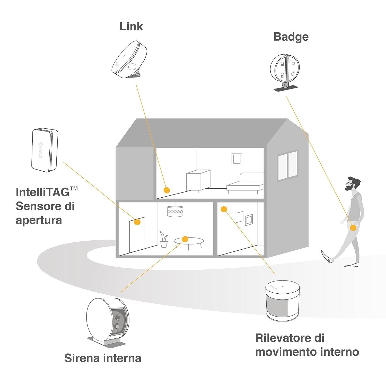 Somfy, Home Alarm, Pack alarma, gris plateado: Amazon.es: Bricolaje y herramientas