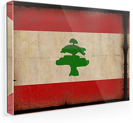 worn chic shabby old Fridge Magnet Magnetic Shield Motif Flag: Belgium