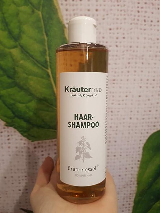 Kräutermax champú ortiga pérdida de cabello 1 x 250 ml: Amazon.es: Belleza