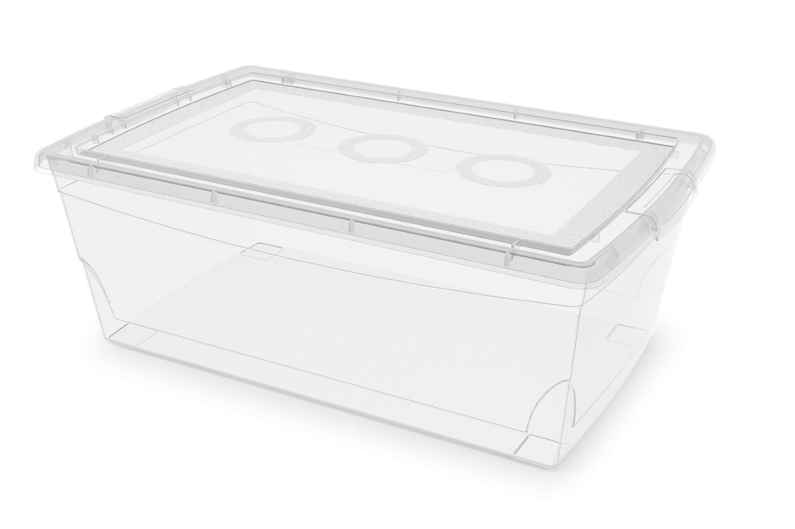 6.5-Quart//6-Liter KIS Clear Omni Shoe Box 9-Pack