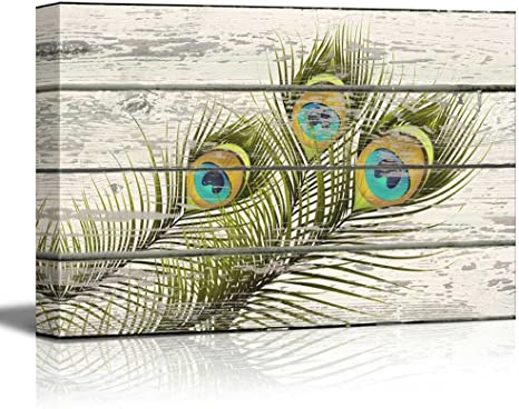 Home Decor Peacock Feather Art//Canvas Print Wall Art Poster