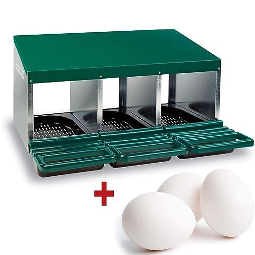 FINCA CASAREJO Ponederos para gallinas + 3 Huevos macizos de ...